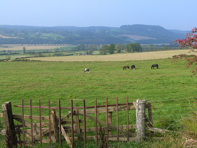 A view over Teviotdale