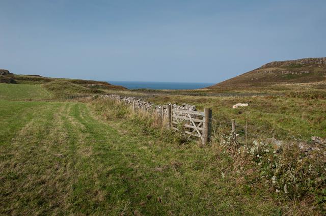 Pasture near Haunn