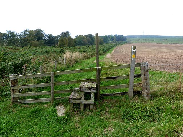Border Abbeys Way at Merlin Dean