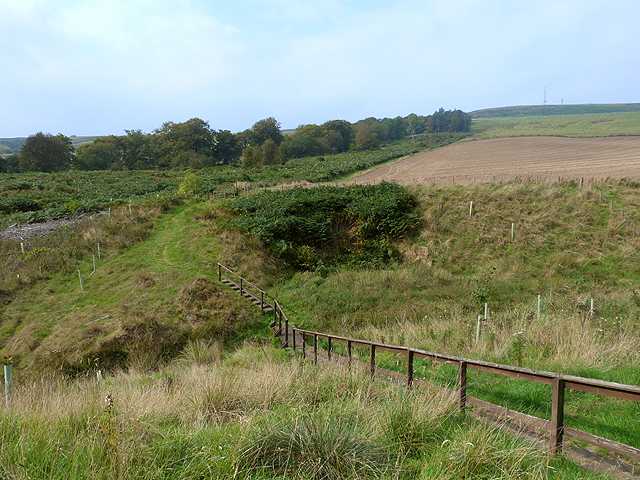Border Abbeys Way at Merlin Dean