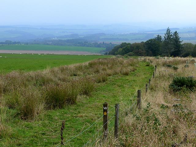 Border Abbeys Way above Merlin Dean