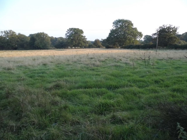 Field by Brockhamhurst Road, Blackbrook