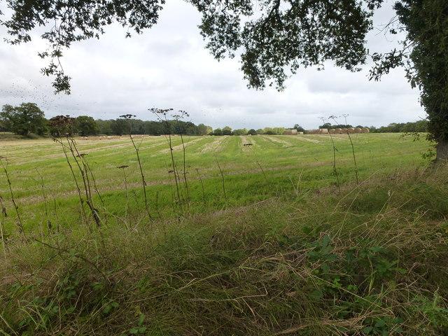Farmland between Blickling and Aylsham