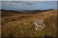 NM3646 : Hillside below Beinn Reudle : Week 37