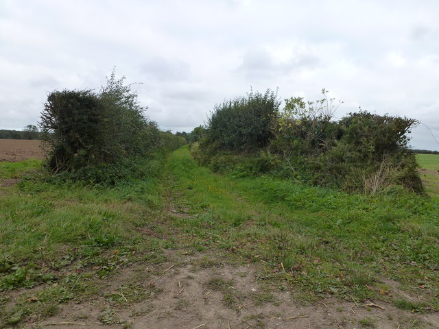 Footpath along a farm track near Oulton Street