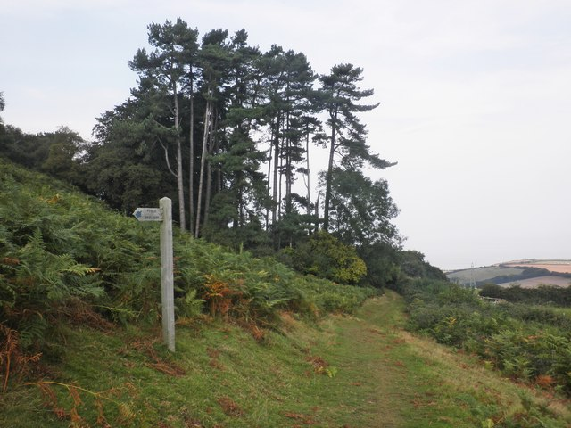 Path Junction, below West Hill