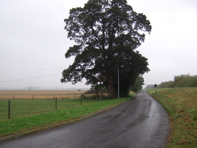 Ravensfleet Road, Wildsworth