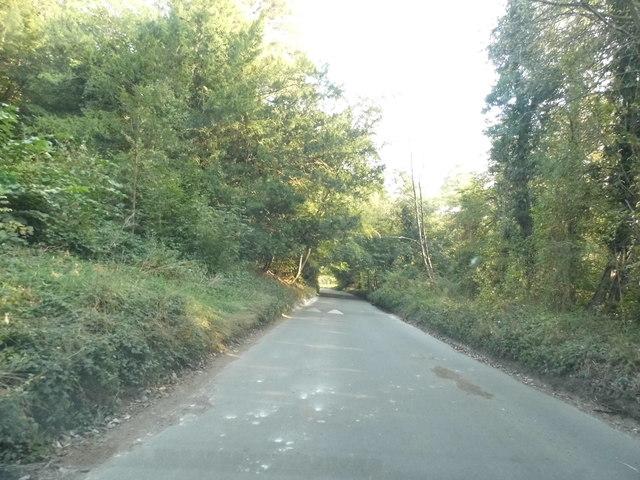 Zigzag Road, Box Hill