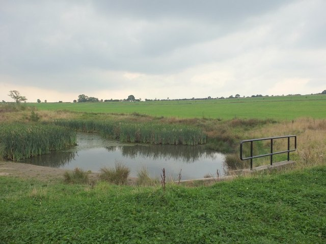Pond on site of old opencast workings near Sandiforth Farm