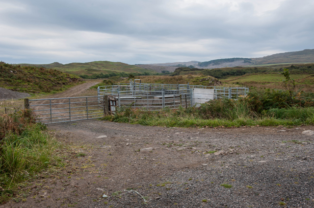 Cattle Pens near Crossapol