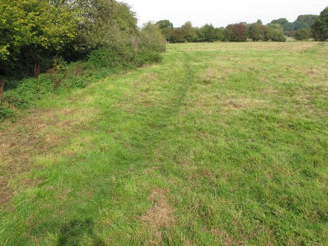 Public footpath across pasture