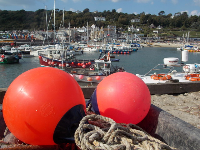 Lyme Regis: buoys at The Cobb