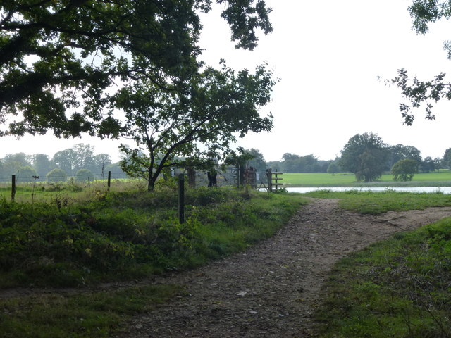 Footpath from the fishermen's car park, Blickling