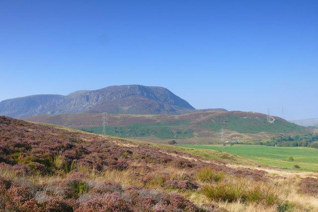 Llethrau isaf Mynydd Nodol / The lower slopes of Mynydd Nodol