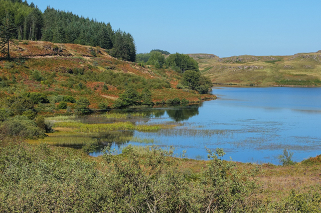 Loch an Torr