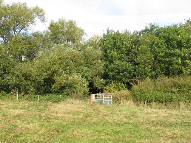 Public footpath reaches county boundary near Scotsgrove Mill
