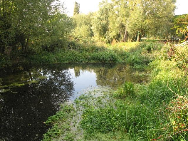 Mill stream at Scotsgrove