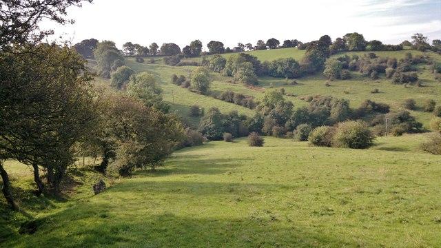 View towards Swainsley Head