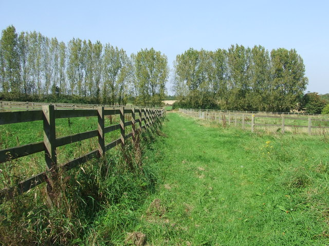 Footpath And Paddocks