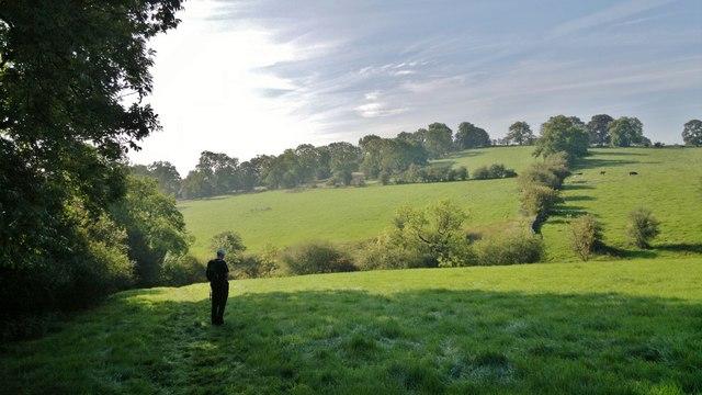 View towards Lanehouse Farm