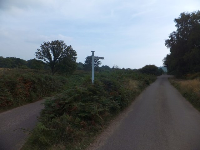 Fork in roads on East Budleigh Common
