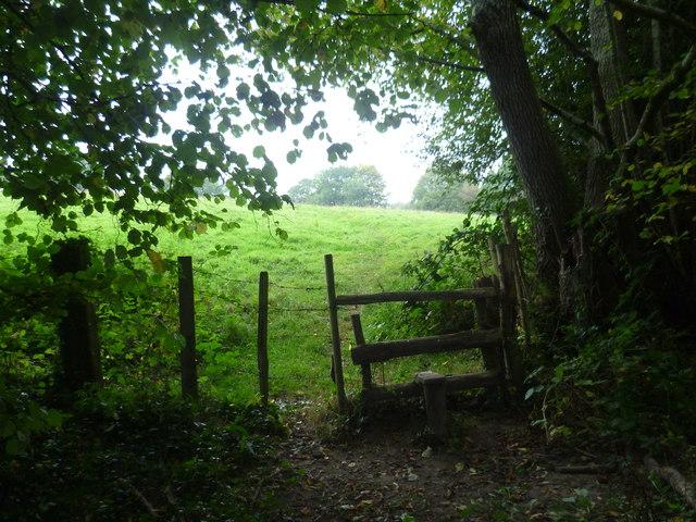 Footpath leaving Keysden Wood