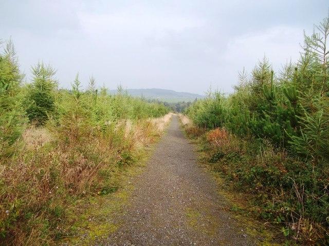 Path near Far Swinden