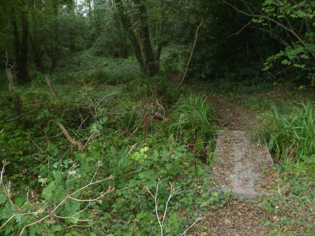 Footpath into Keysden Wood
