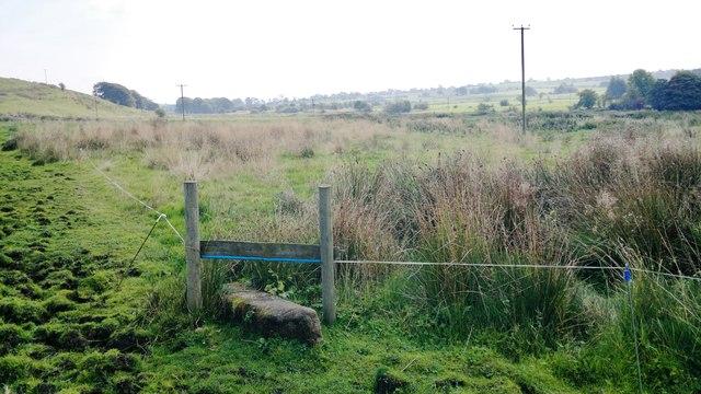 Hamps Way below Grindon Moor