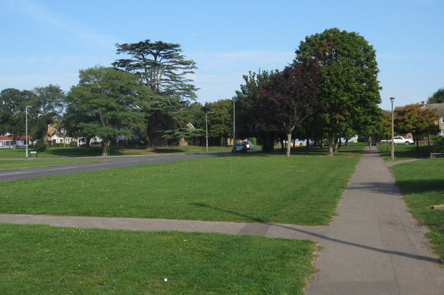 Trees on Church Lane