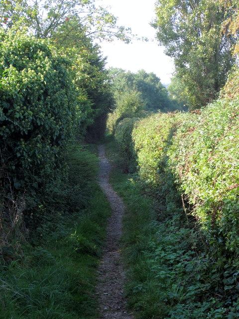 Footpath to Putnoe