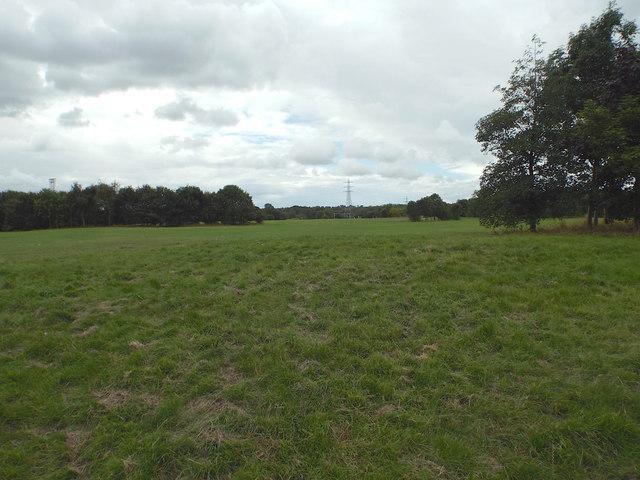 Hillfield Park, Hillfield