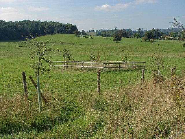 View towards Eastbury Park