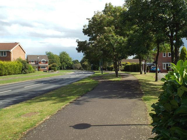 East on Widney Lane, Hillfield