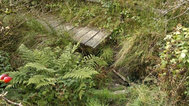 Bridge down!