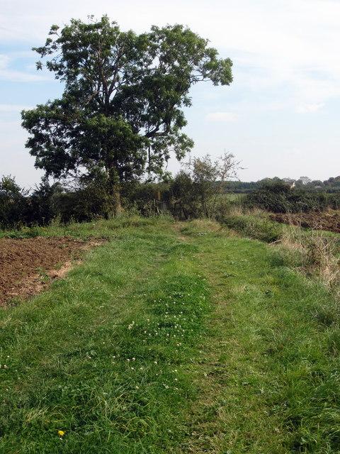 Footpath to Wilden
