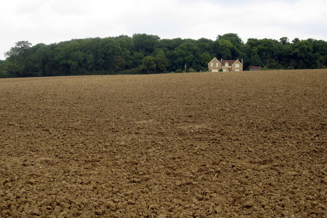 Field by Church End with Great Early Grove beyond