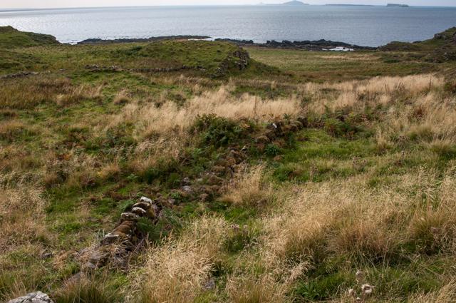 Drystone walls on Treshnish coastline
