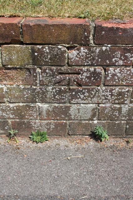 Benchmark on wall of Kenton Road