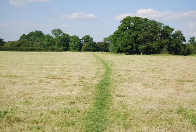 Footpath across a field