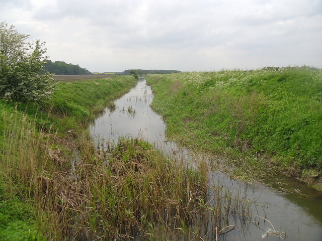 Drain near Stancil.