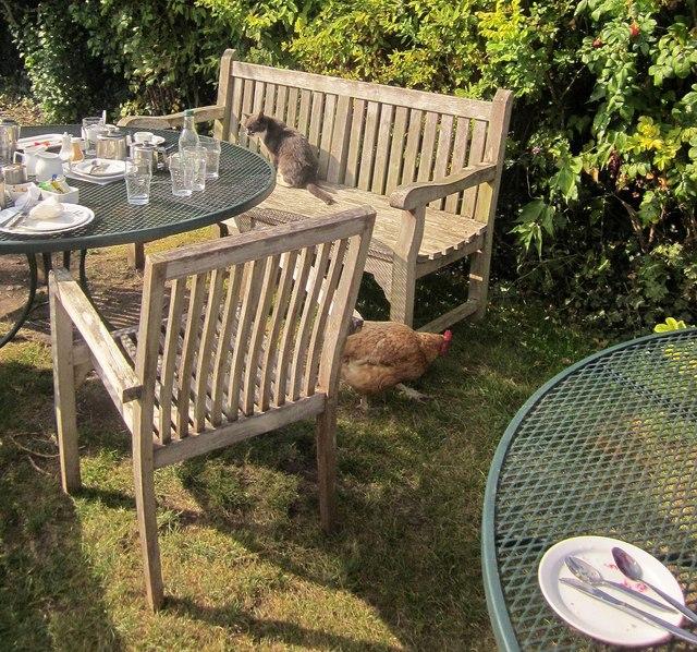 Chantry Tea Gardens, Kilve