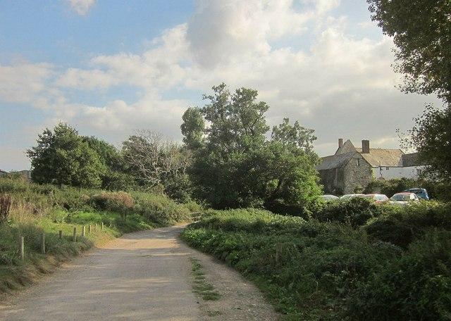 Lane at Kilve Chantry