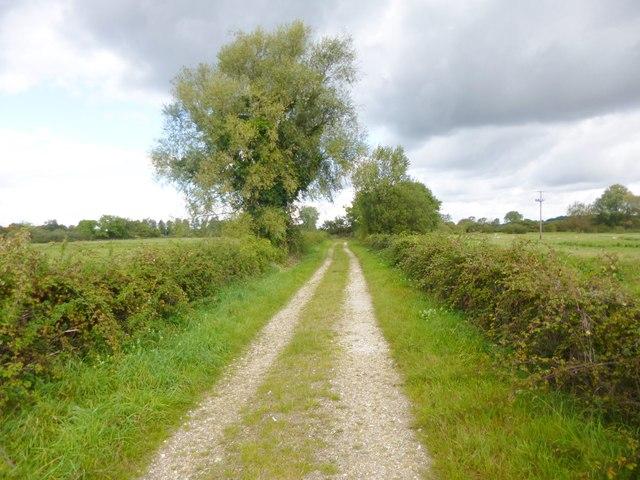 South Charford, farm road