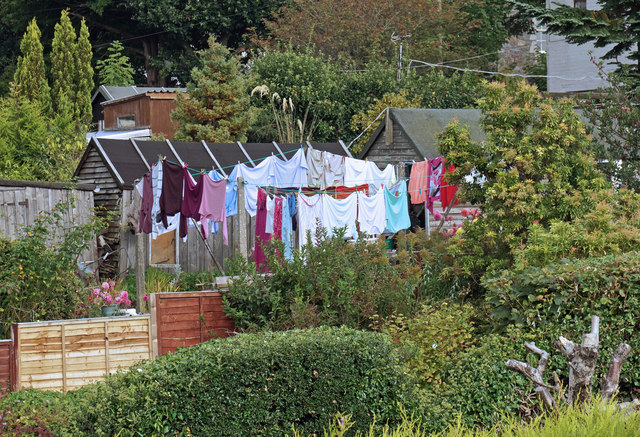 A lot of washing!