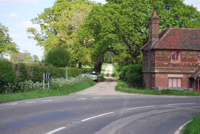 Track off Cole's Lane
