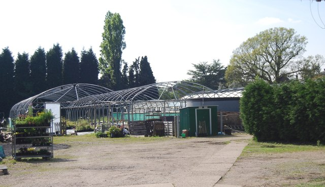 Greenhouses, Cole's Lane