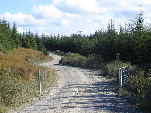 Logging road and gate