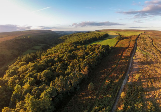 Lower Farndale from above The Lund