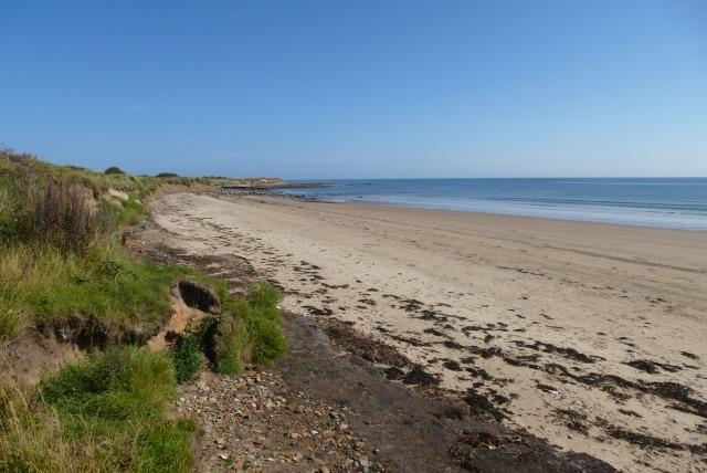 Beach near Hauxley